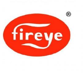 Đại lý phân phối Fireye tại Việt Nam