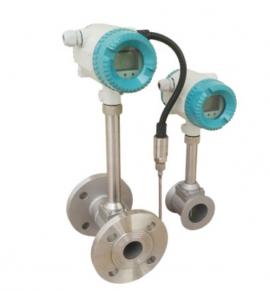 Đồng hồ đo lưu lượng Vortex Riels RIF300